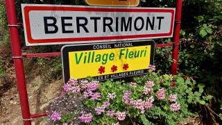 Bertrimont, Village fleuri